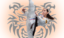 martial arts & karate classes for adults