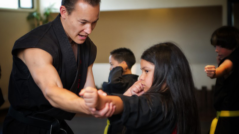 The Way Of The Shadow Martial Arts Academy